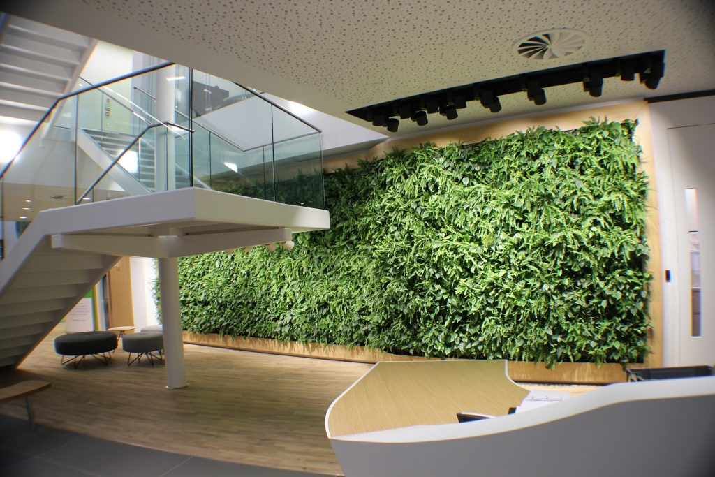 Indoor groene gevel