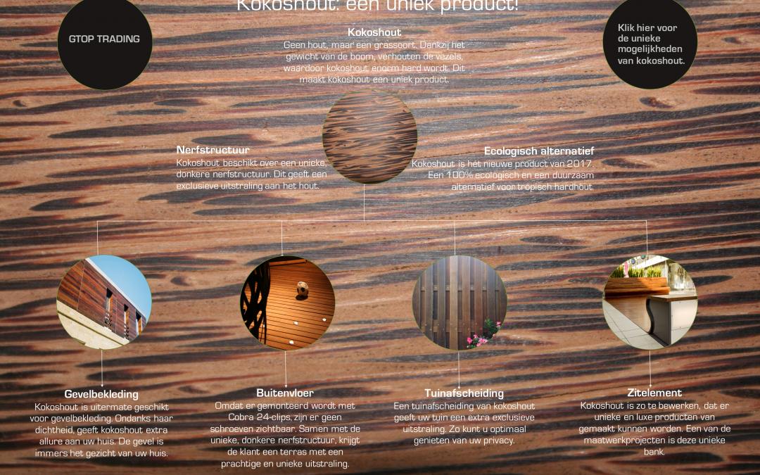 Infographic kokoshout