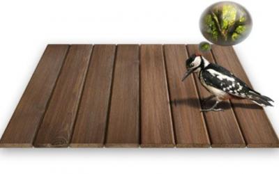 Uitzonderlijk buitenleven met een houten of Fiberon® composiet terras!